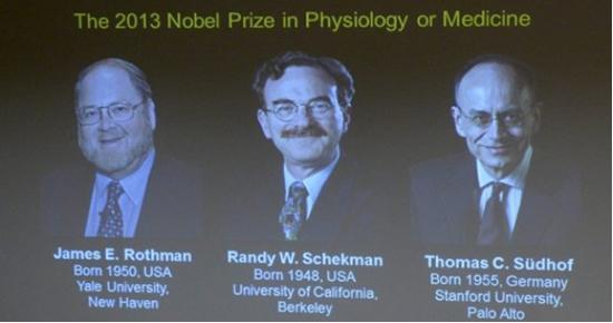 Dos estadounidenses y un alemán comparten Nobel de Medicina 2013