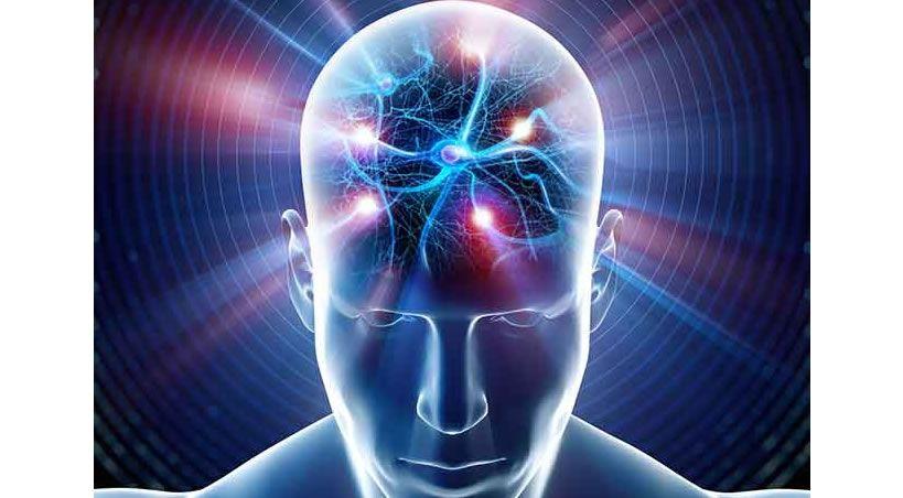 ¿Qué aportan las neurociencias a la odontología?