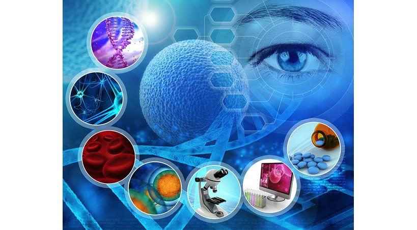 Avances en la investigación de células madre y en el desarrollo terapéutico
