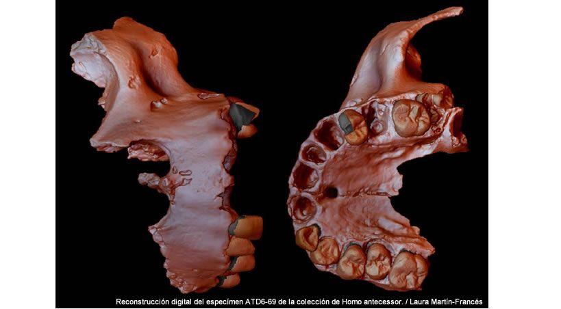 Obtienen la evidencia genética humana más antigua hasta la fecha